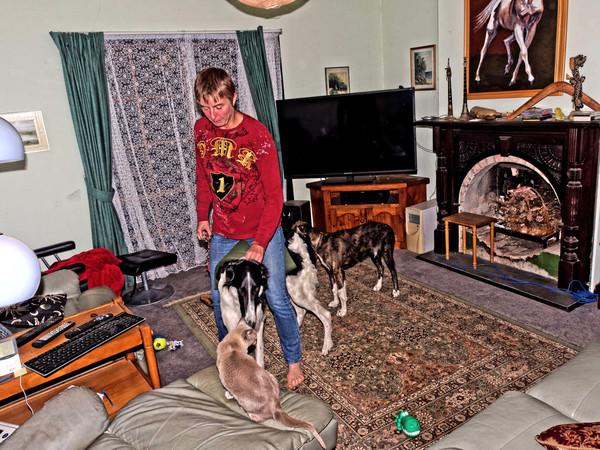Chris-and-dogs-14.jpeg