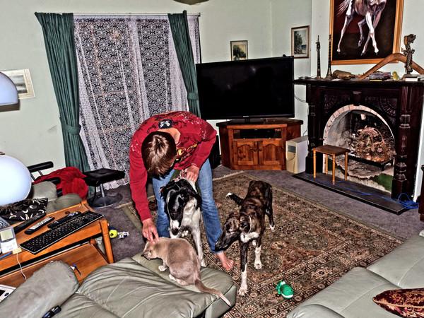 Chris-and-dogs-15.jpeg