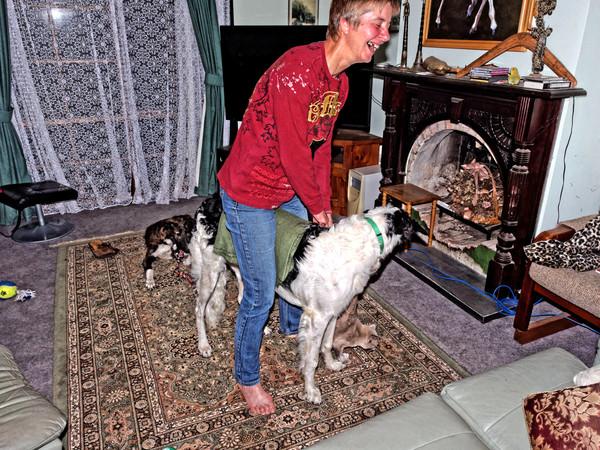 Chris-and-dogs-21.jpeg