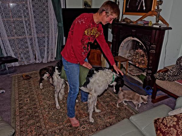 Chris-and-dogs-22-DxO.jpeg