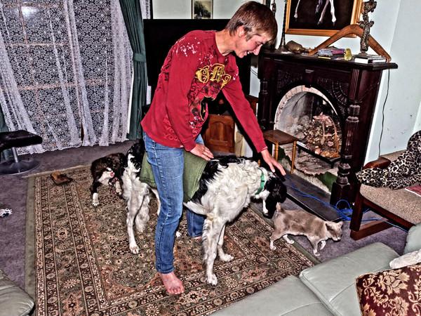 Chris-and-dogs-22.jpeg