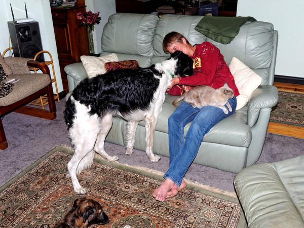Chris-and-dogs-35.jpeg