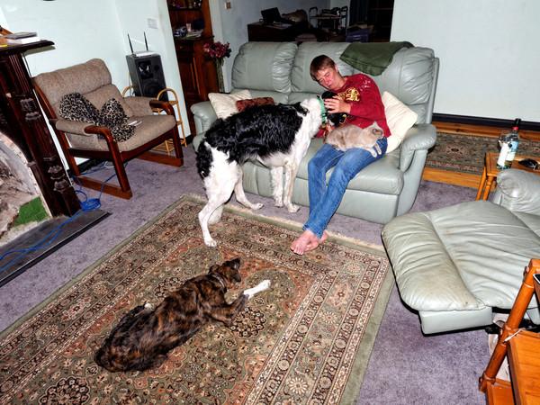 Chris-and-dogs-36.jpeg