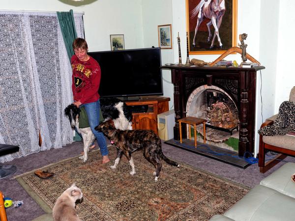 Chris-and-dogs-9.jpeg