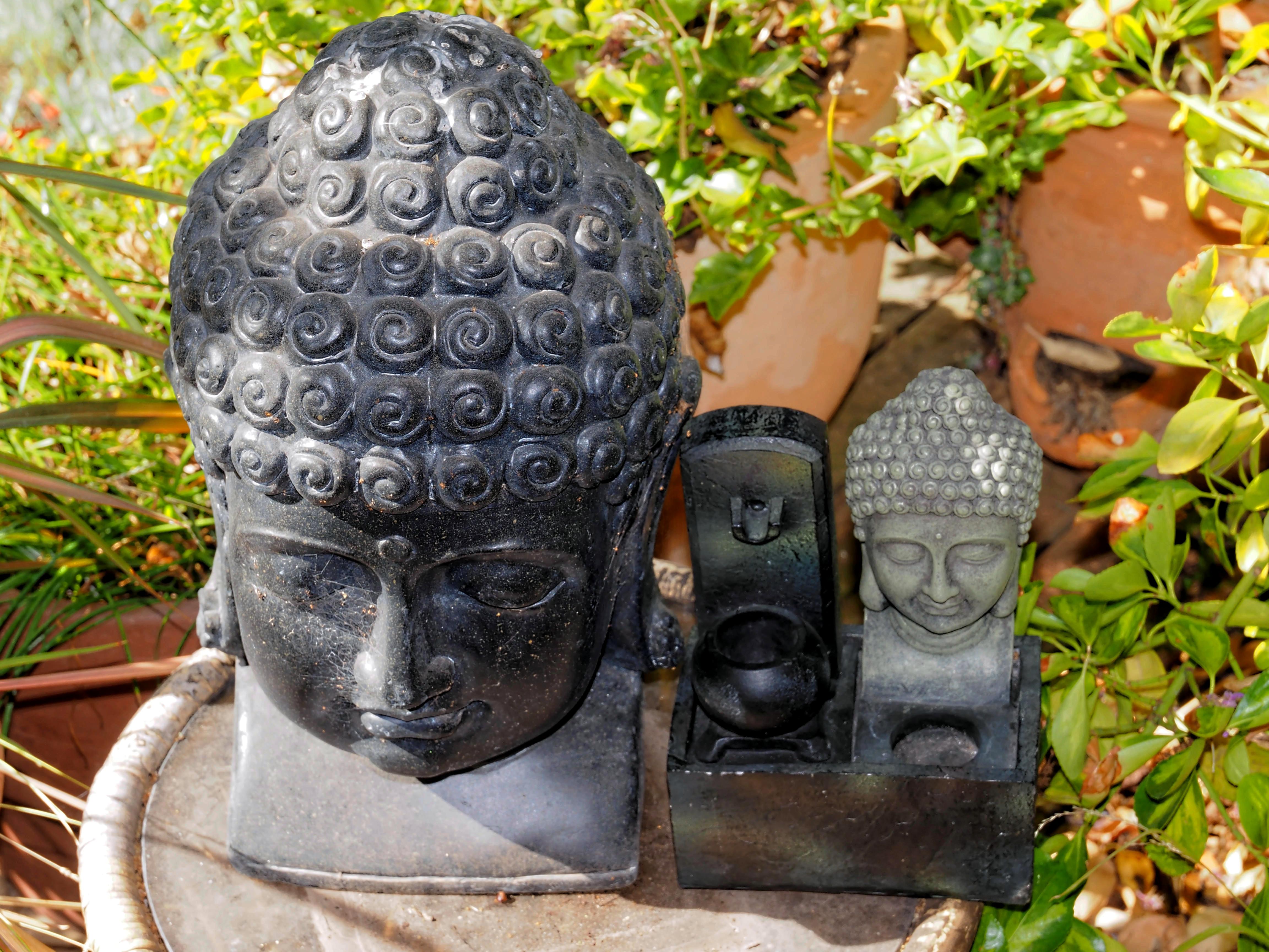 Buddha-6.jpeg