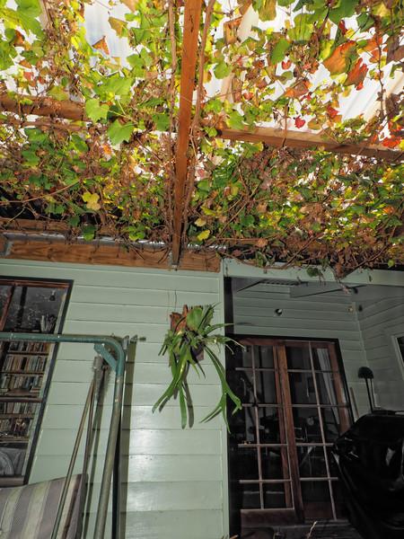 verandah-centre-16.jpeg