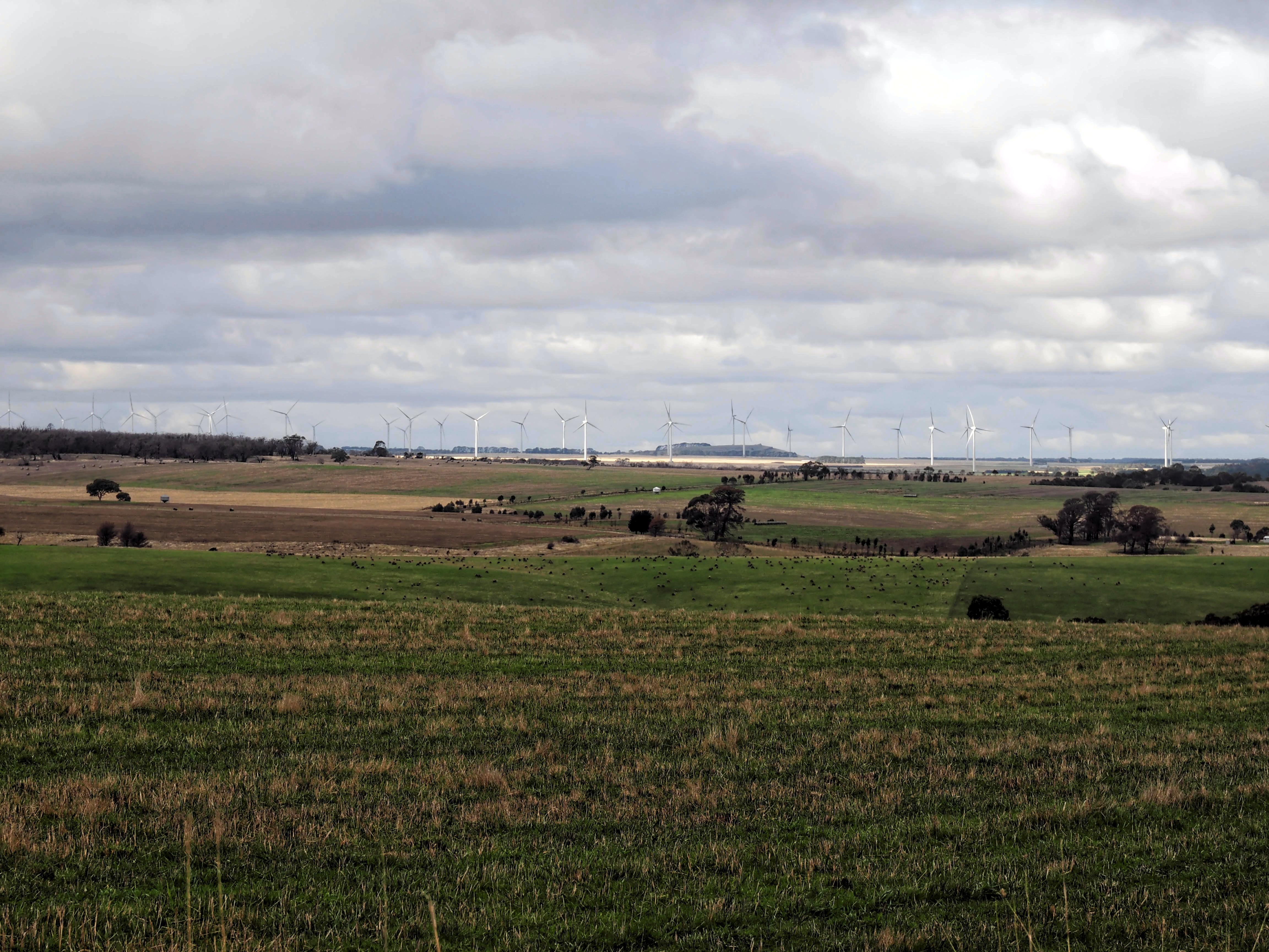 Wind-farm-2.jpeg