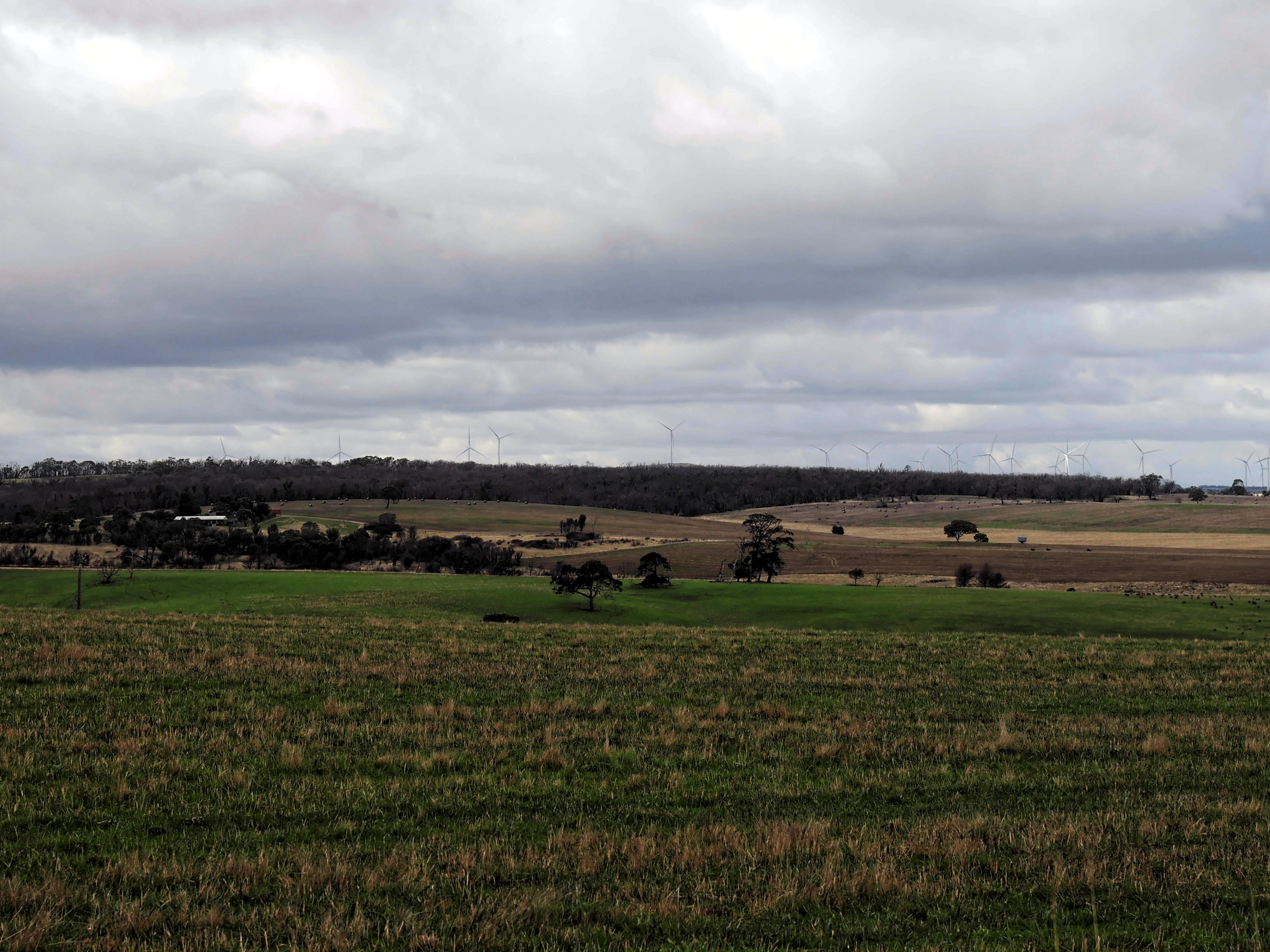 Wind-farm-3.jpeg