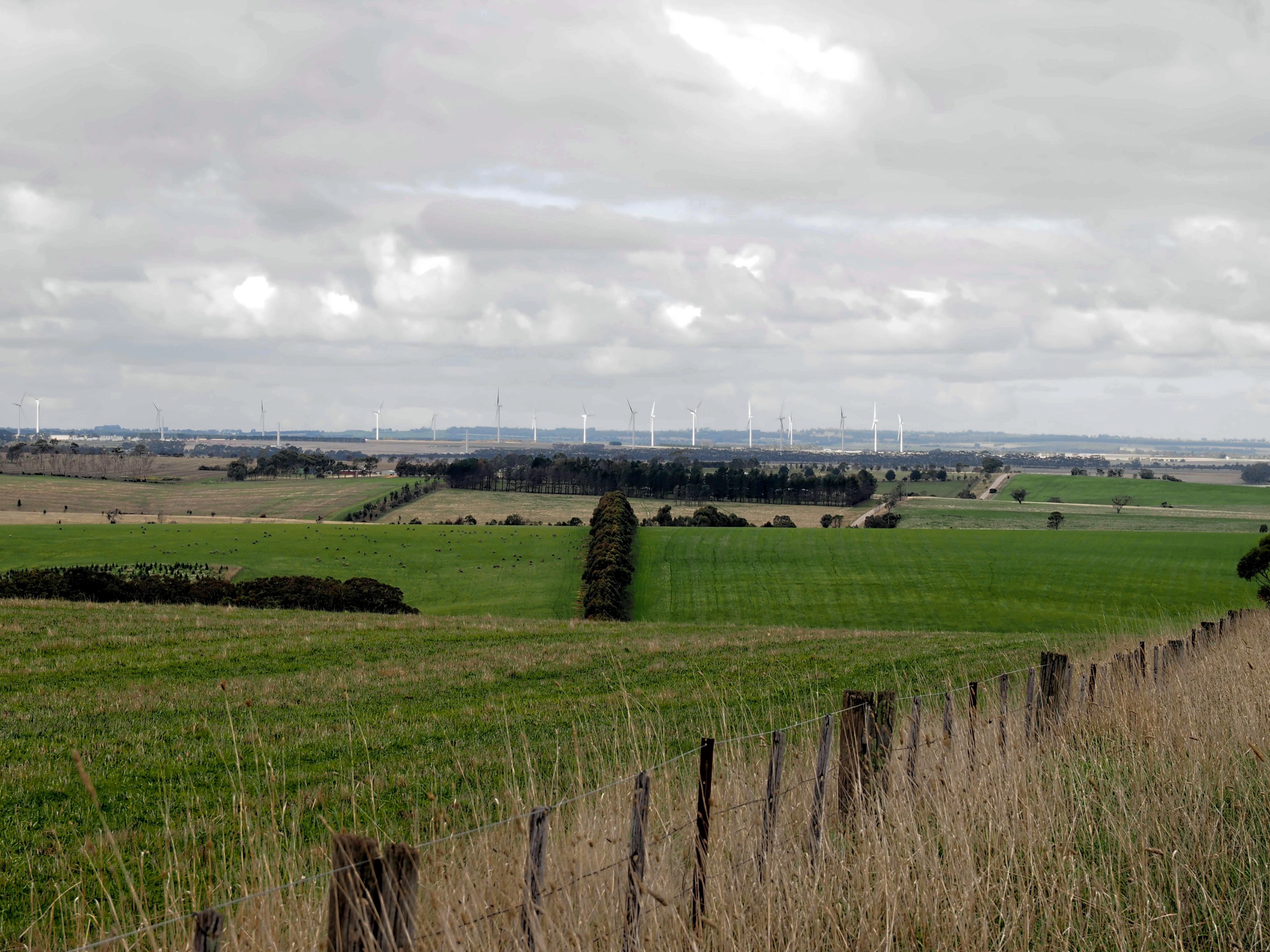 Wind-farm-4.jpeg