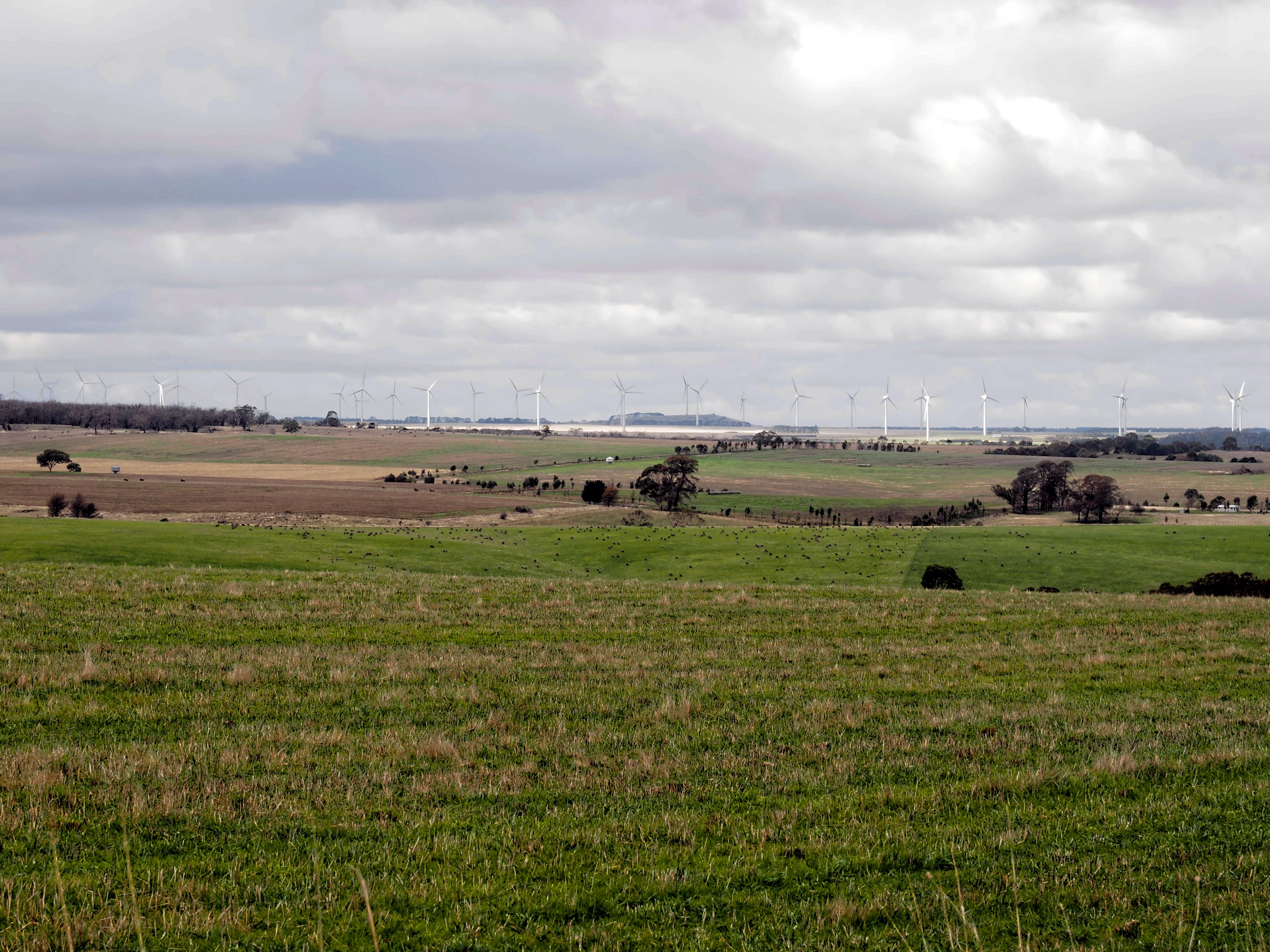 Wind-farm-5.jpeg