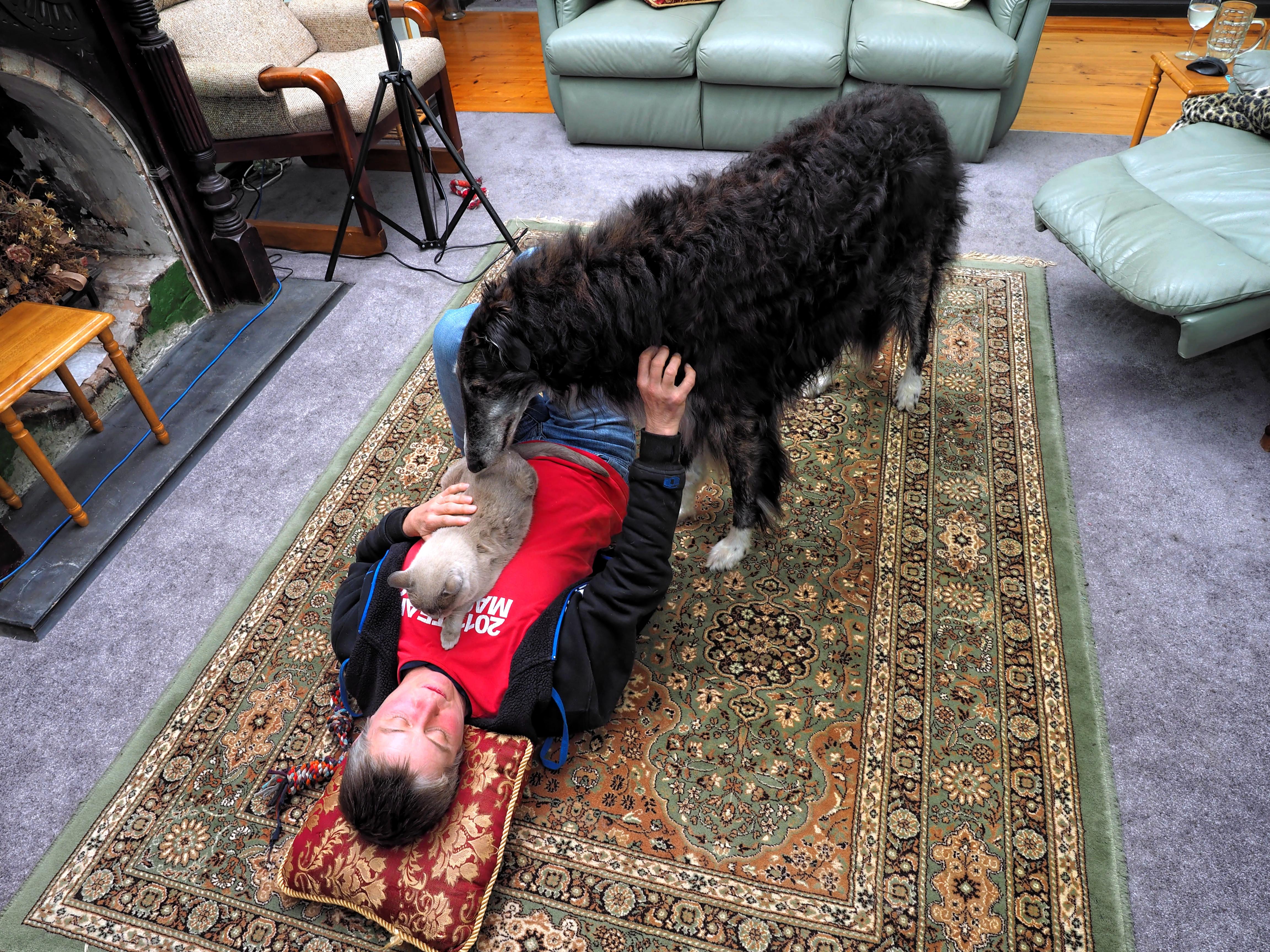 Chris-and-dogs-11.jpeg