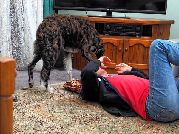 Chris-and-dogs-16.jpeg