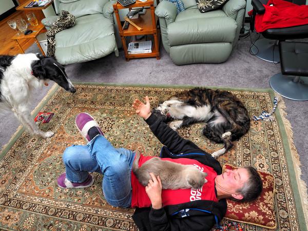 Chris-and-dogs-6.jpeg