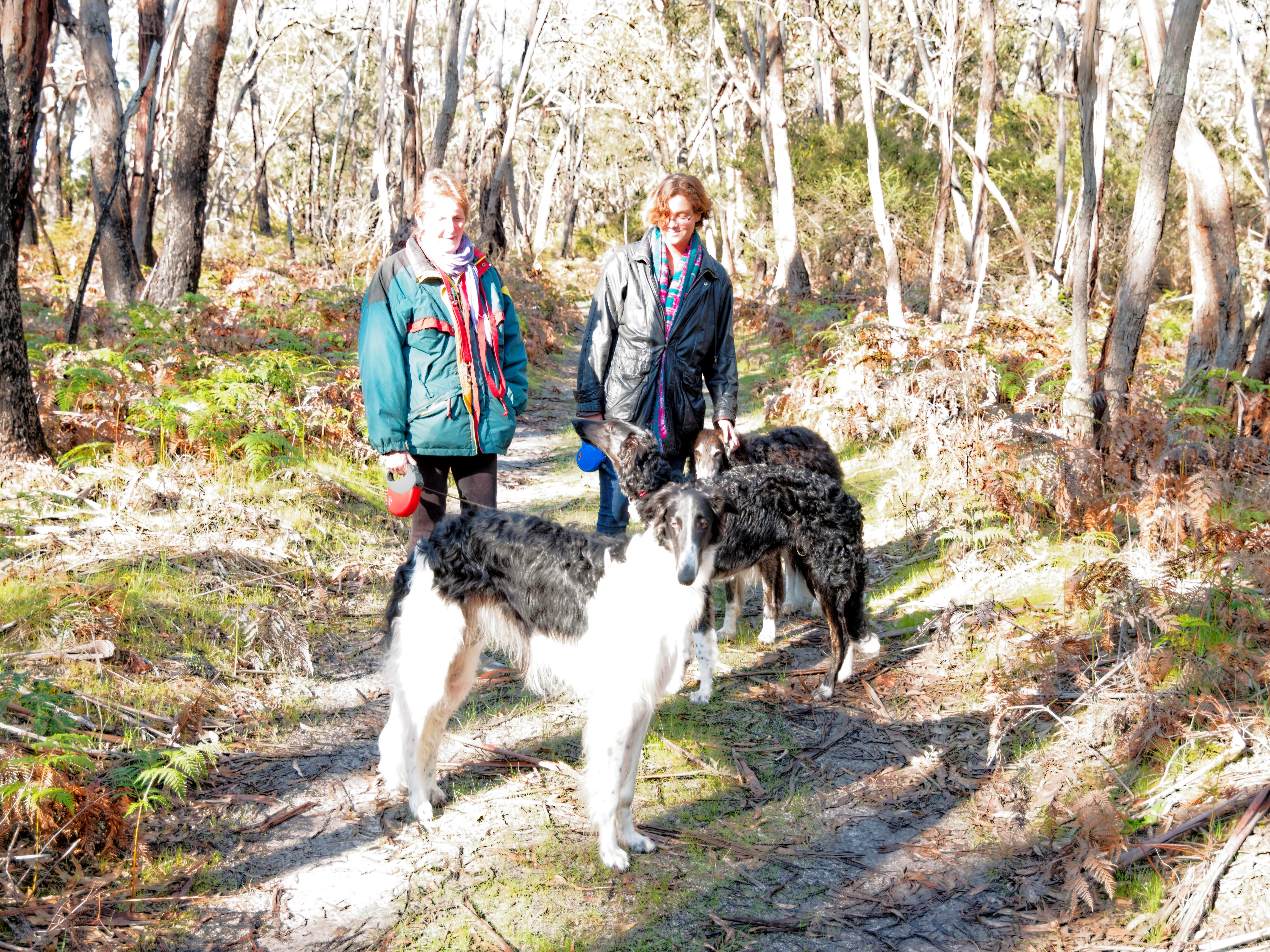 Walk-in-forest-14.jpeg