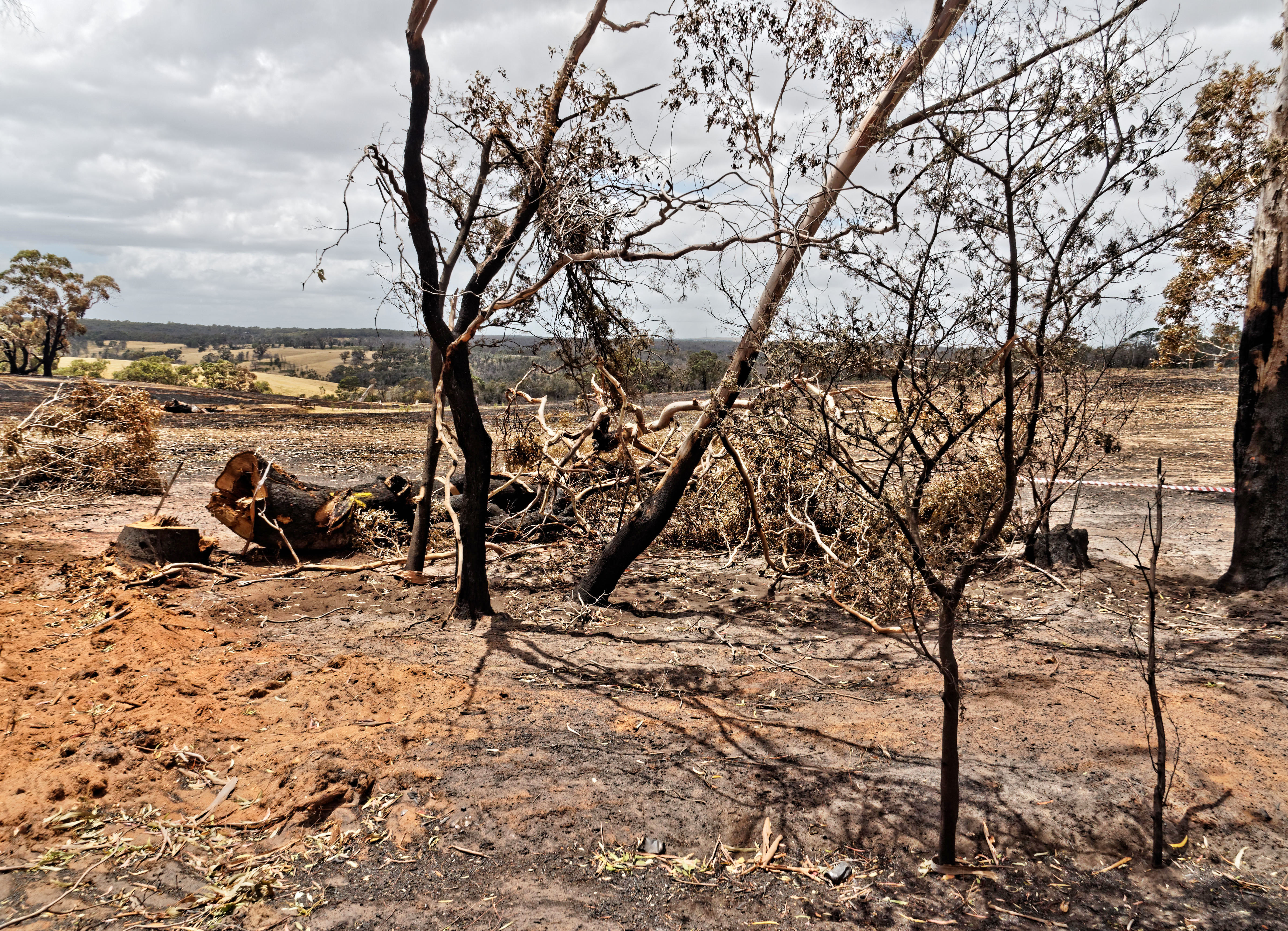 Bushfire-2.jpeg
