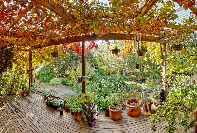 verandah-w.jpeg