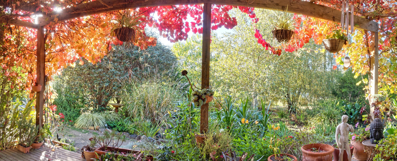 verandah-14-150-filter.jpeg