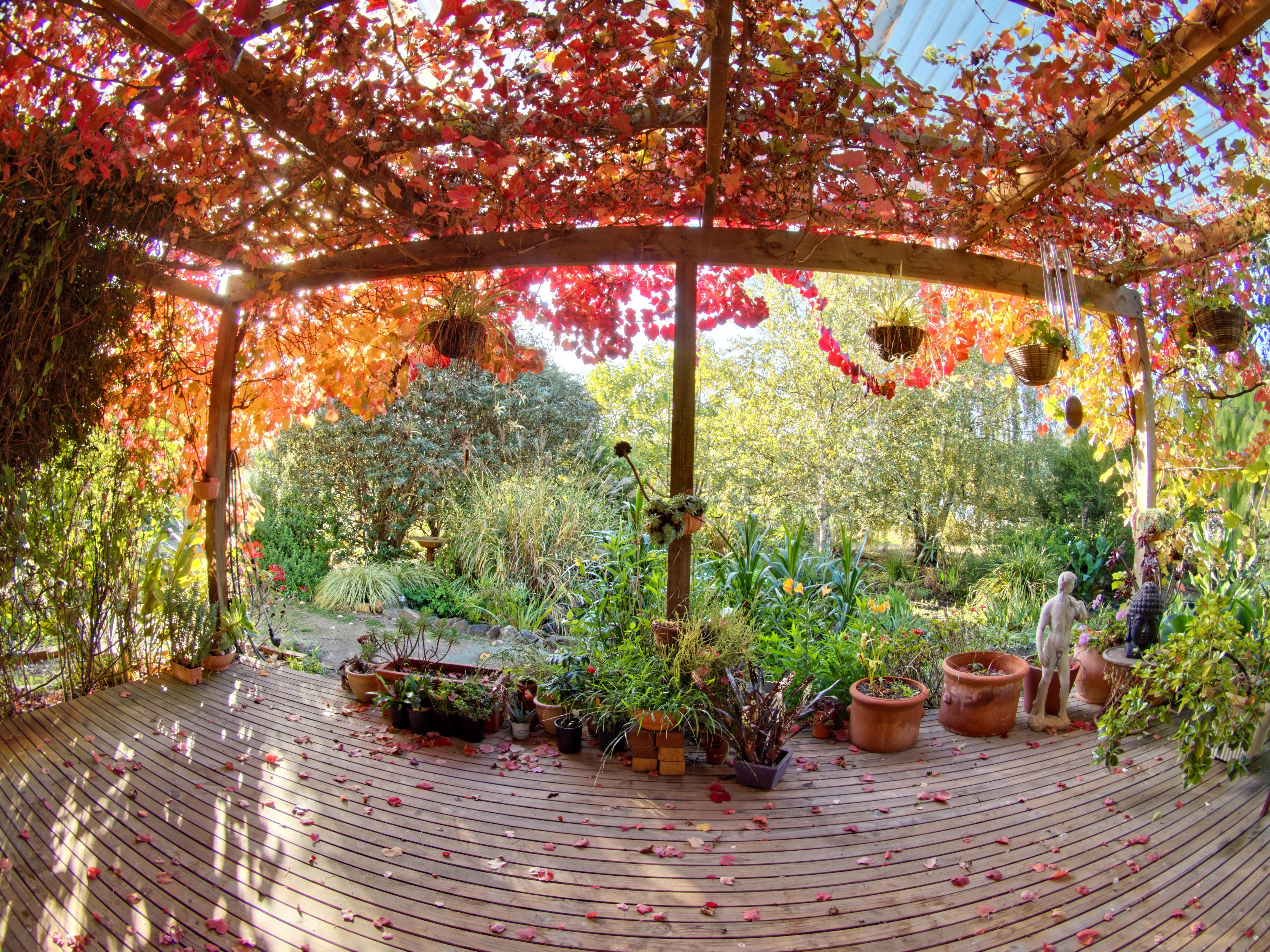 verandah-8.jpeg