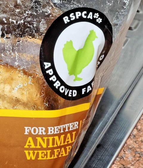 RSPCA-chicken-2-detail-1.jpeg