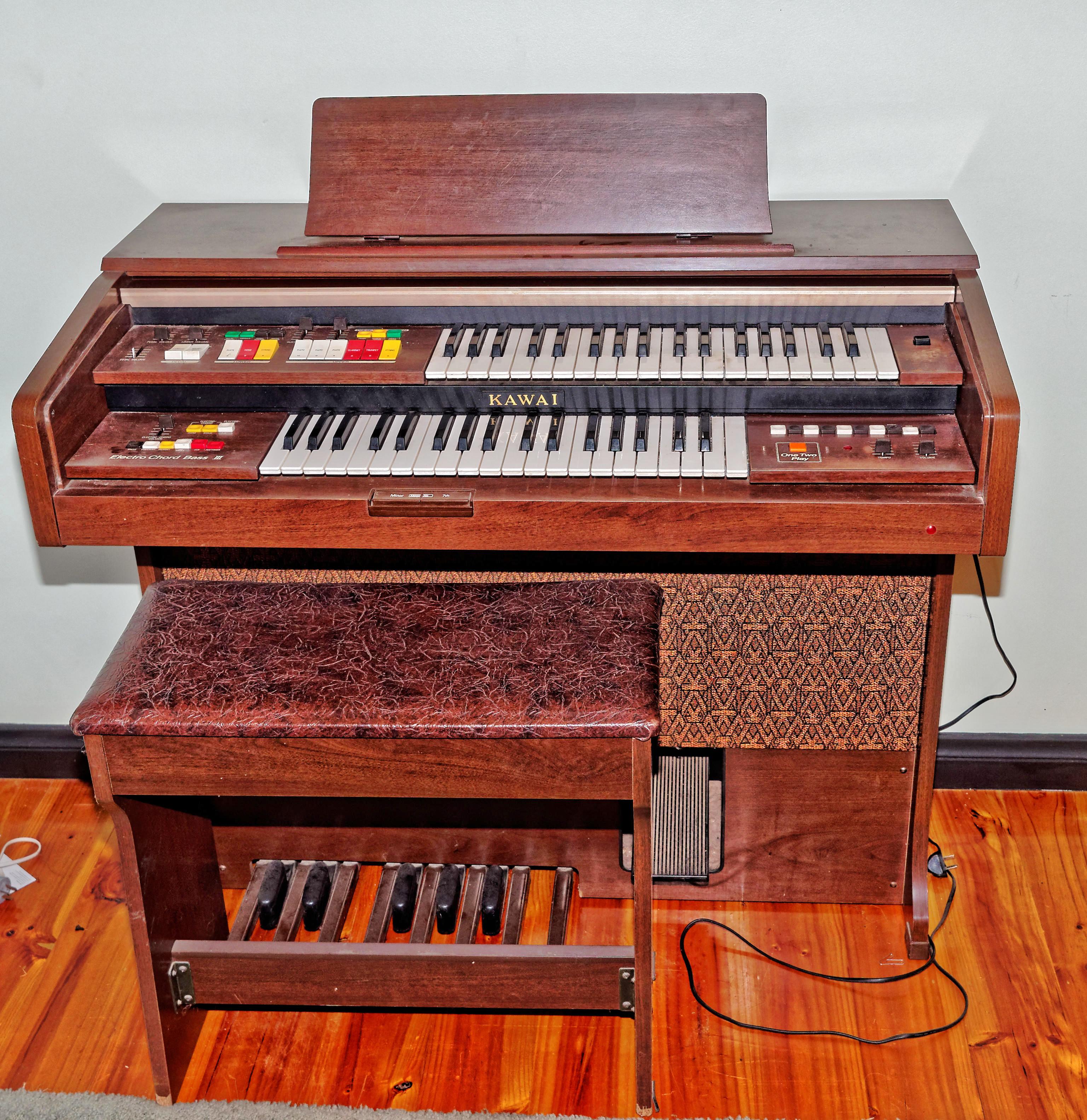 Organ-2.jpeg