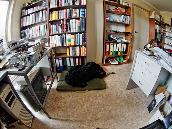 Office-10.jpeg