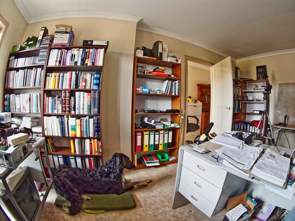 Office-6.jpeg
