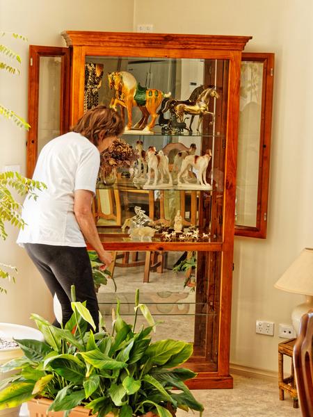 Ornament-cabinet-4.jpeg