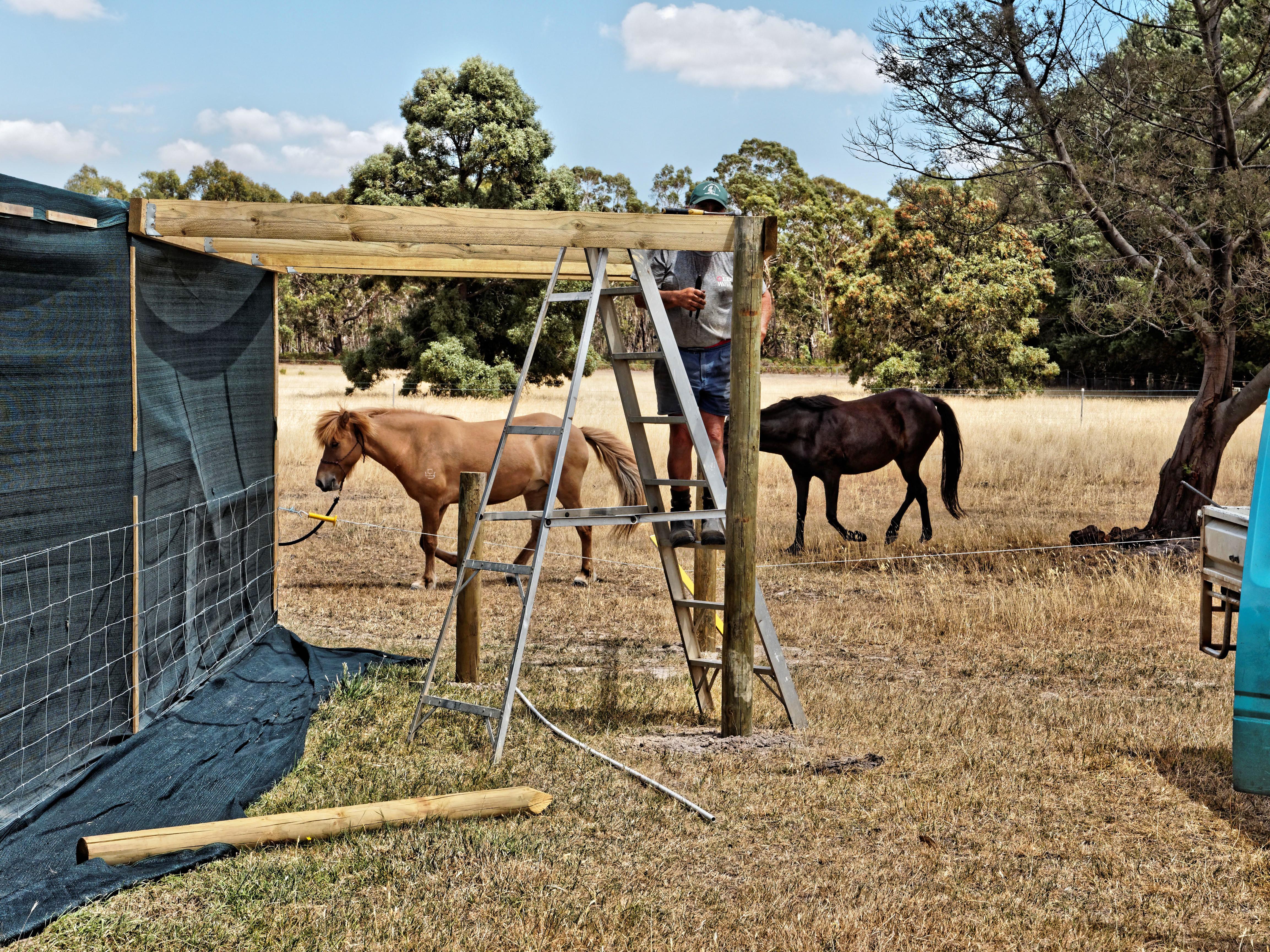 Horse-shelter-2.jpeg