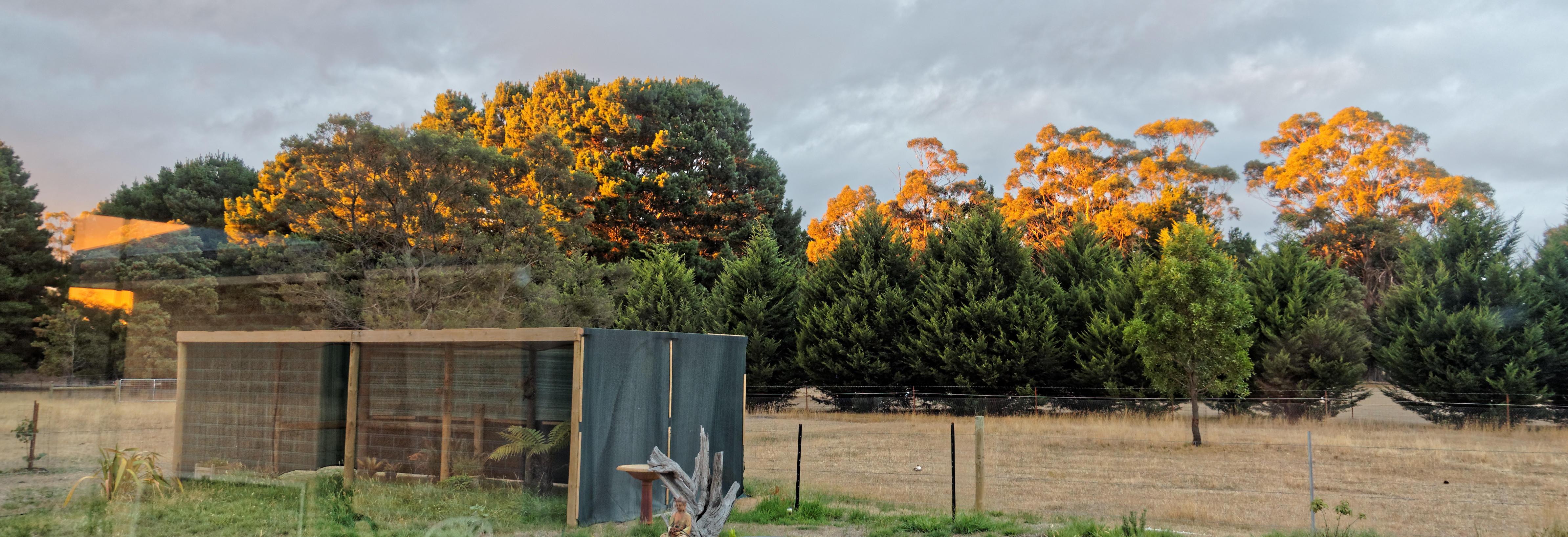 Sunset-2.jpeg