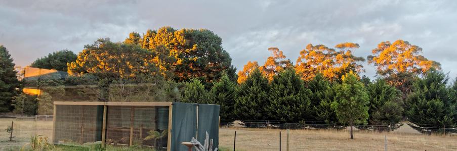 Sunset-1.jpeg