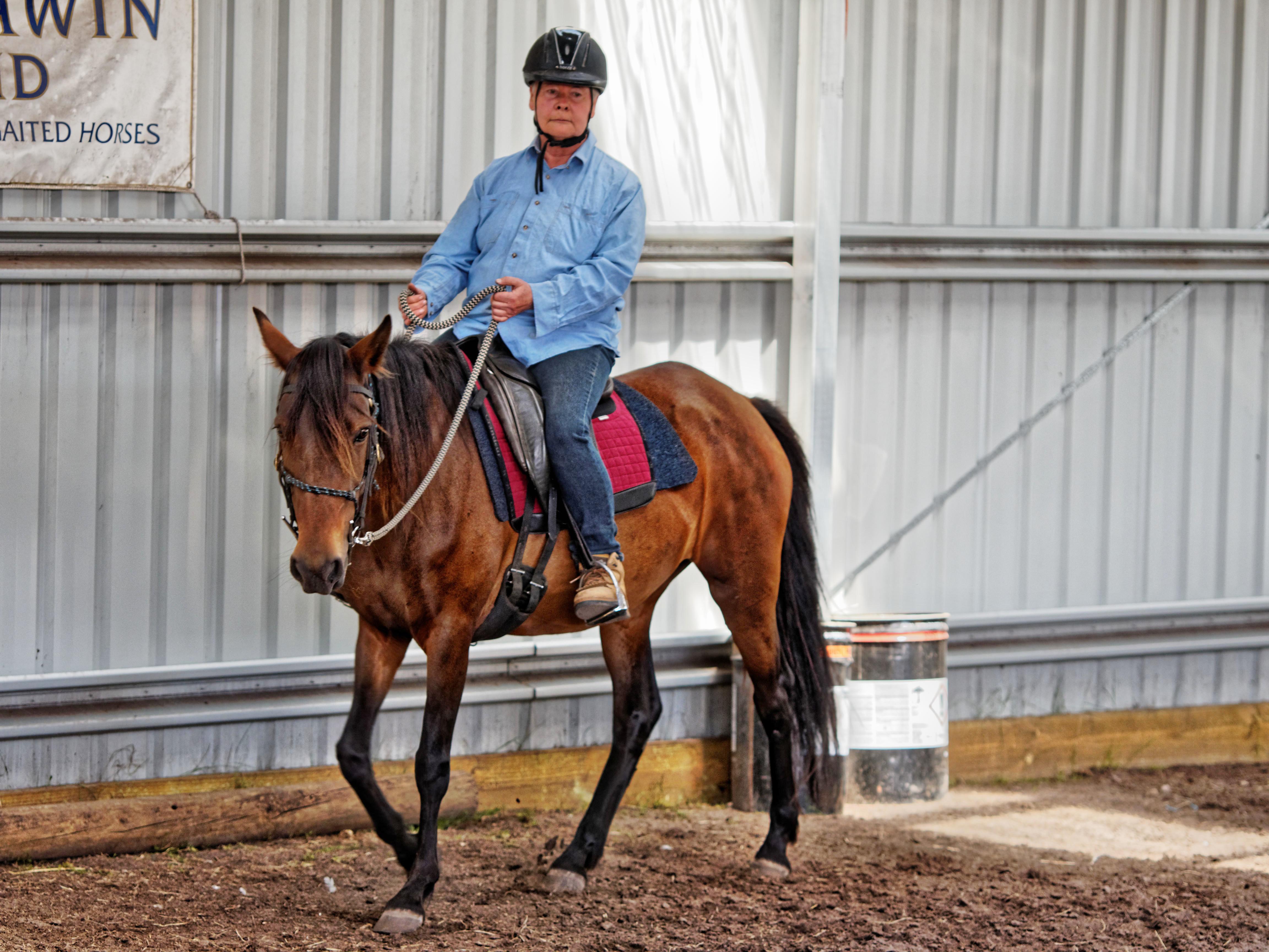 Horse-training-15.jpeg