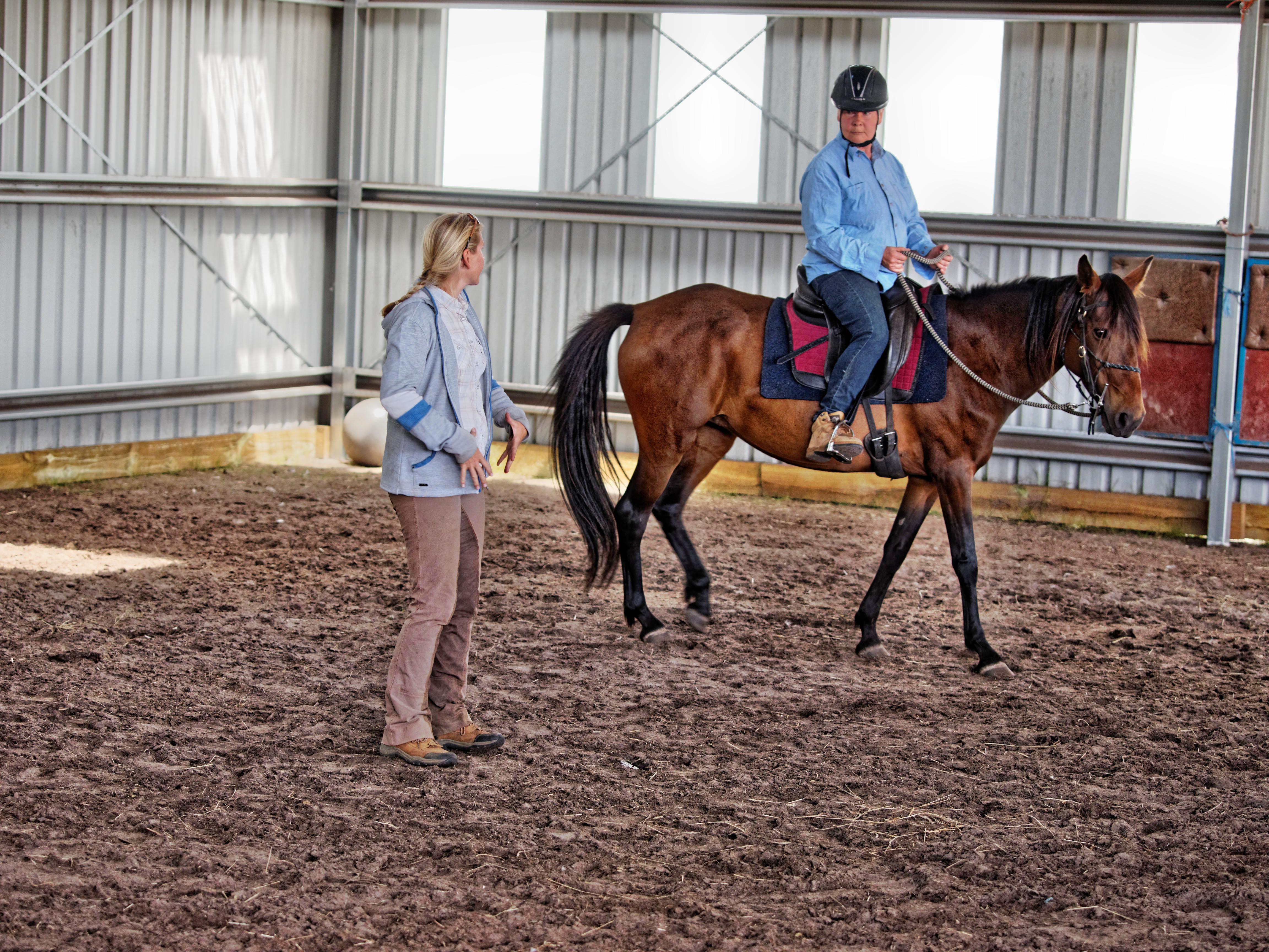 Horse-training-17.jpeg