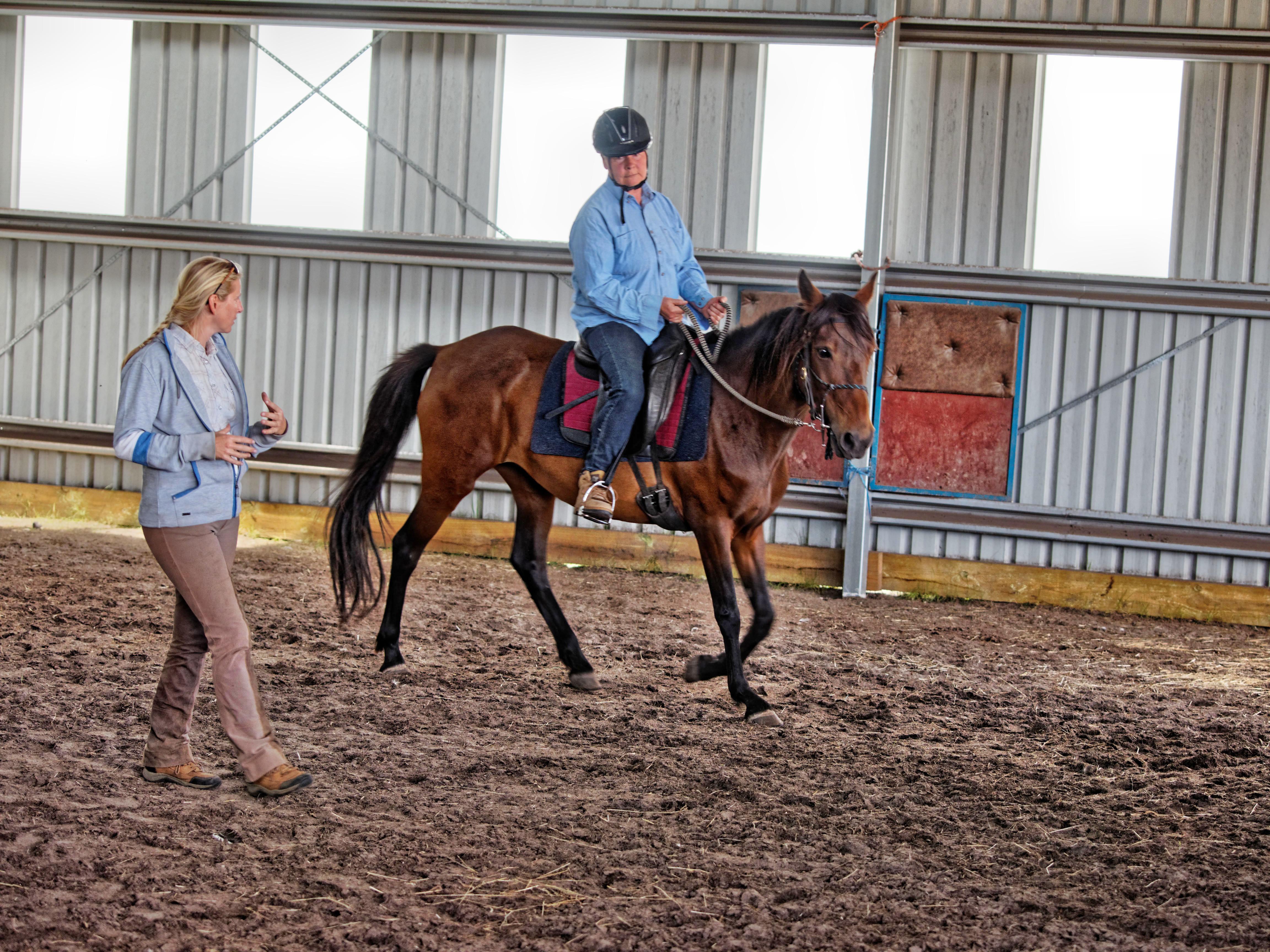 Horse-training-18.jpeg