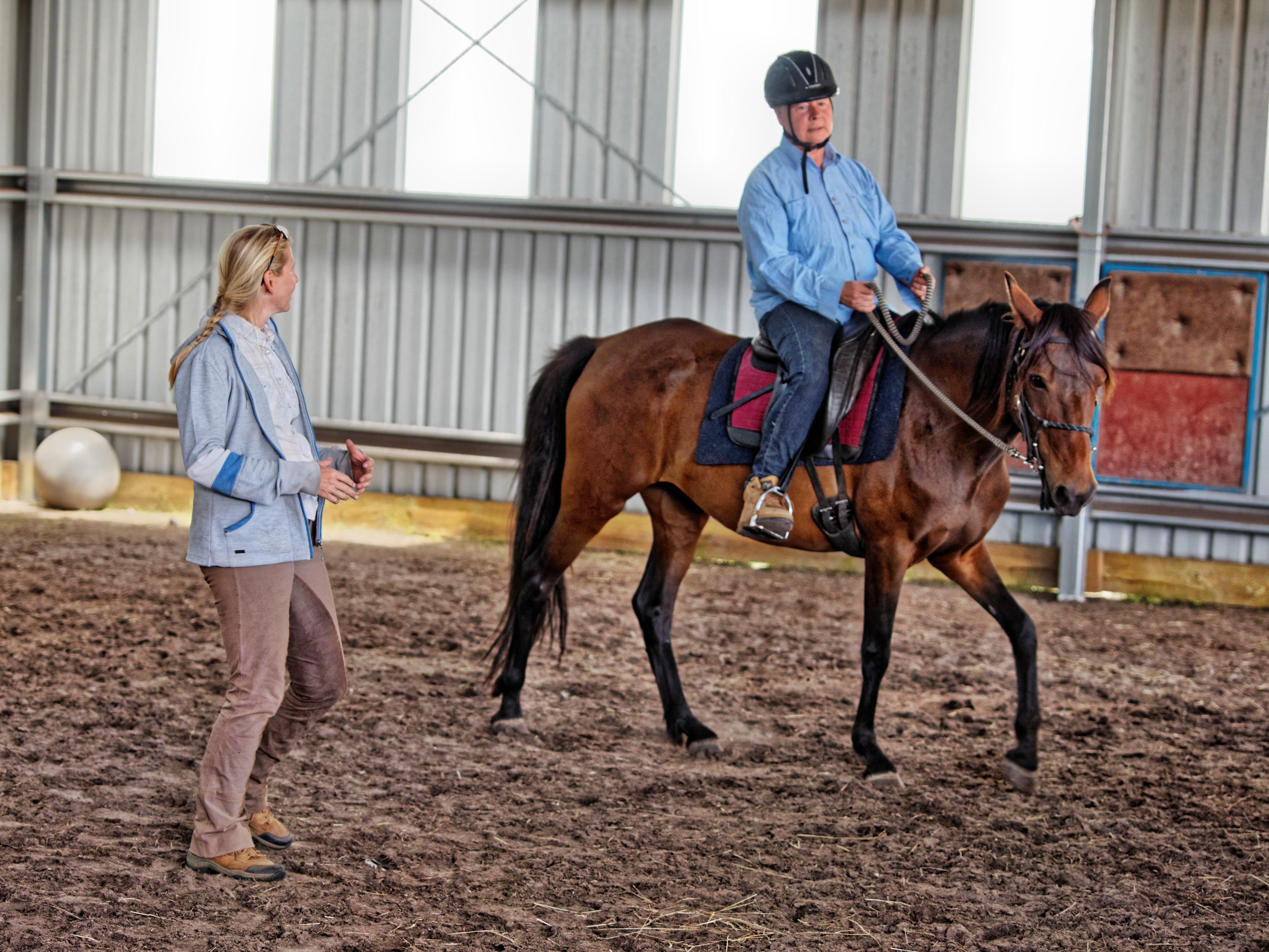 Horse-training-20.jpeg
