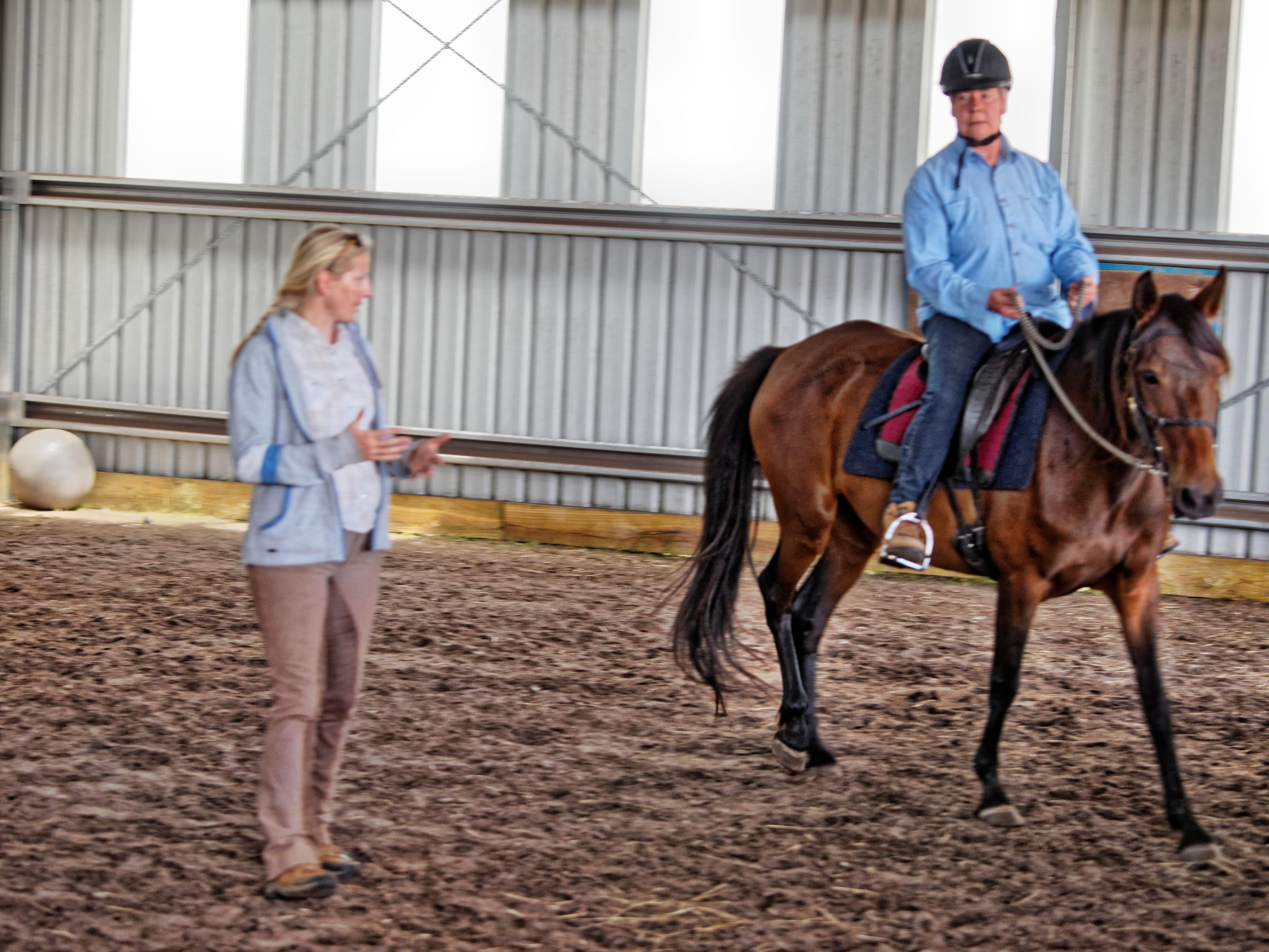 Horse-training-21.jpeg