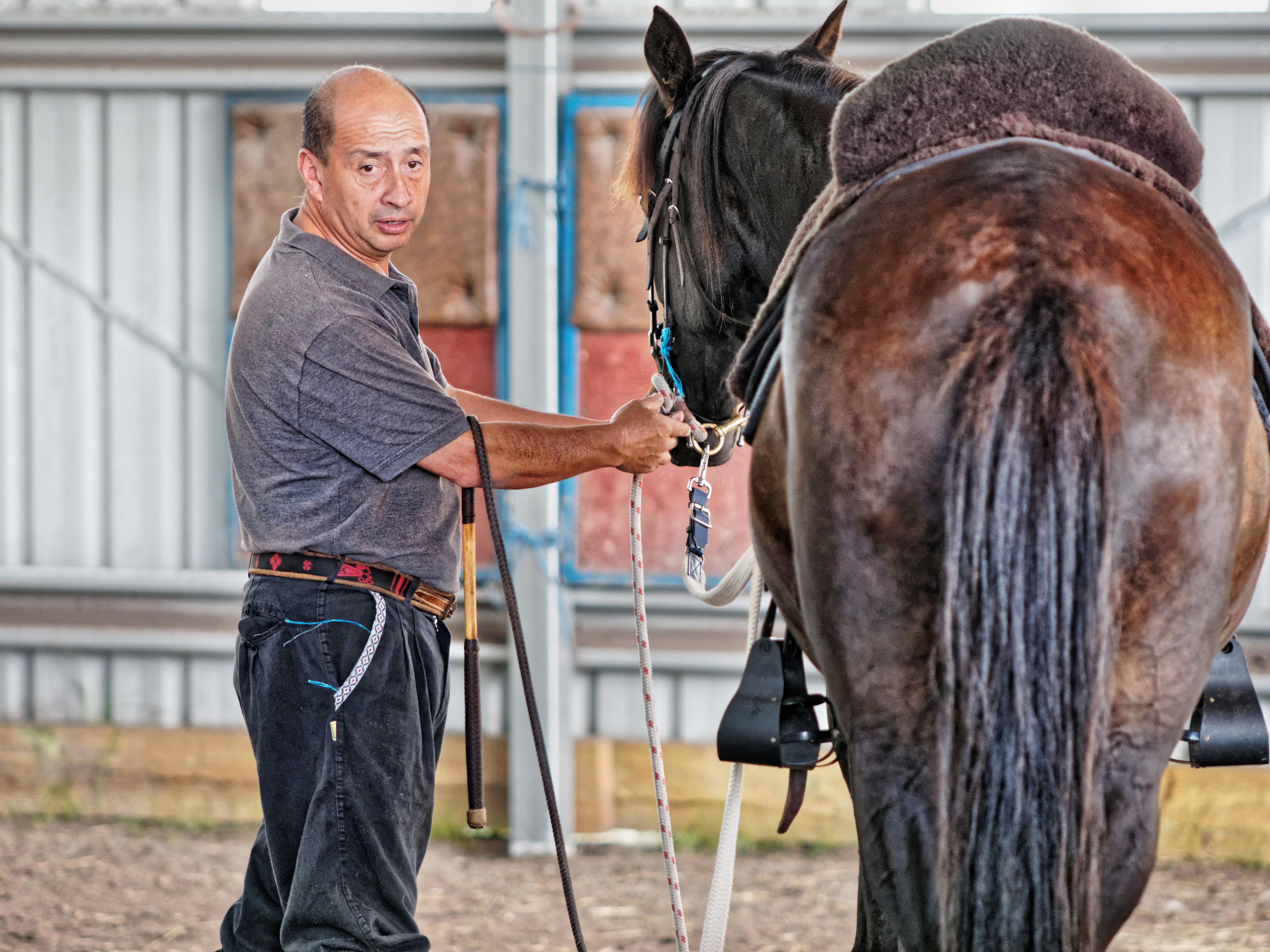 Horse-training-8.jpeg