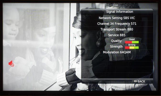 TV-6.jpeg
