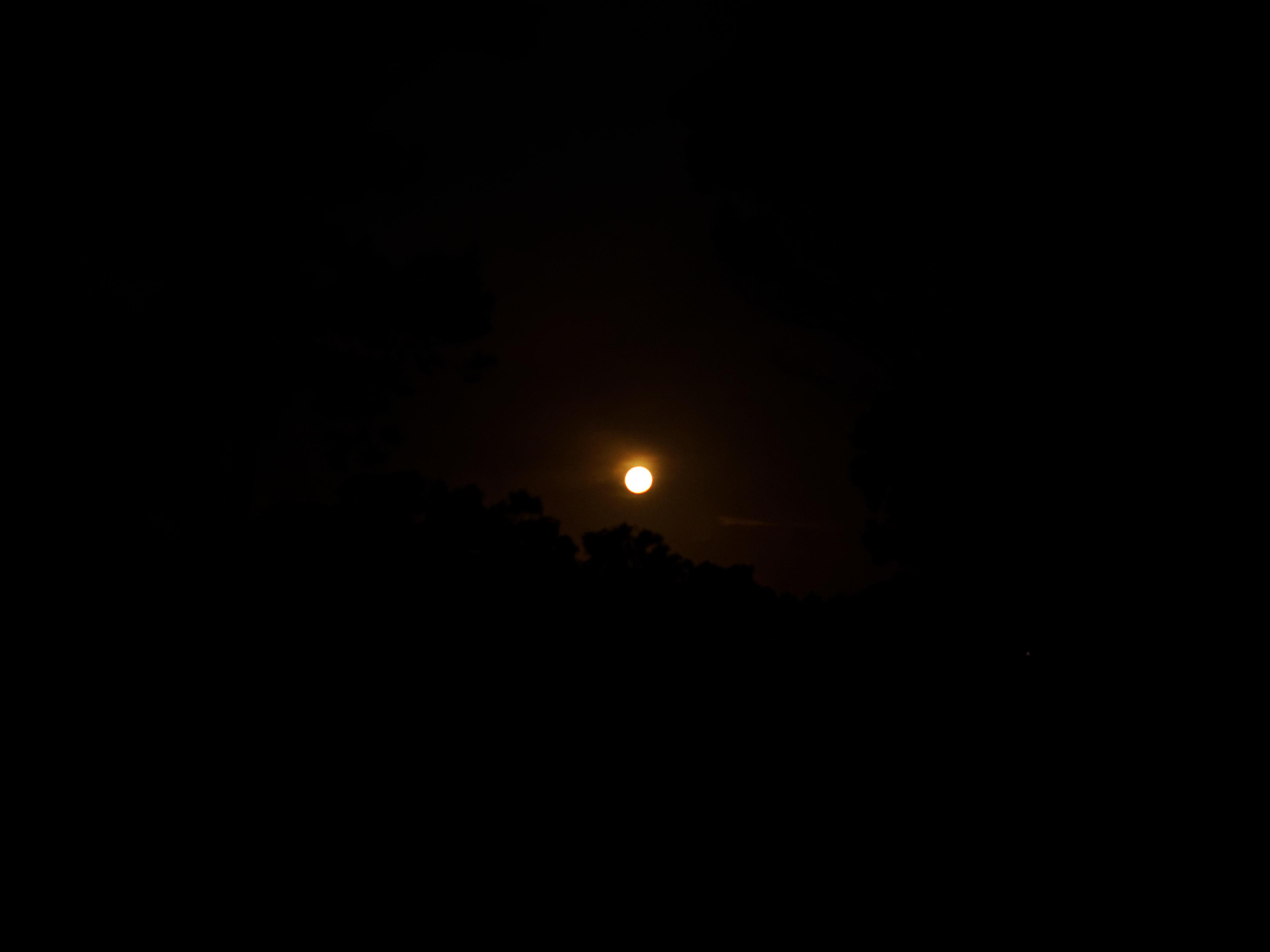 Moonrise-3.jpeg