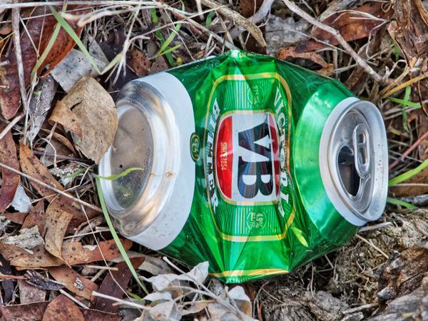 VB-Litter-1.jpeg