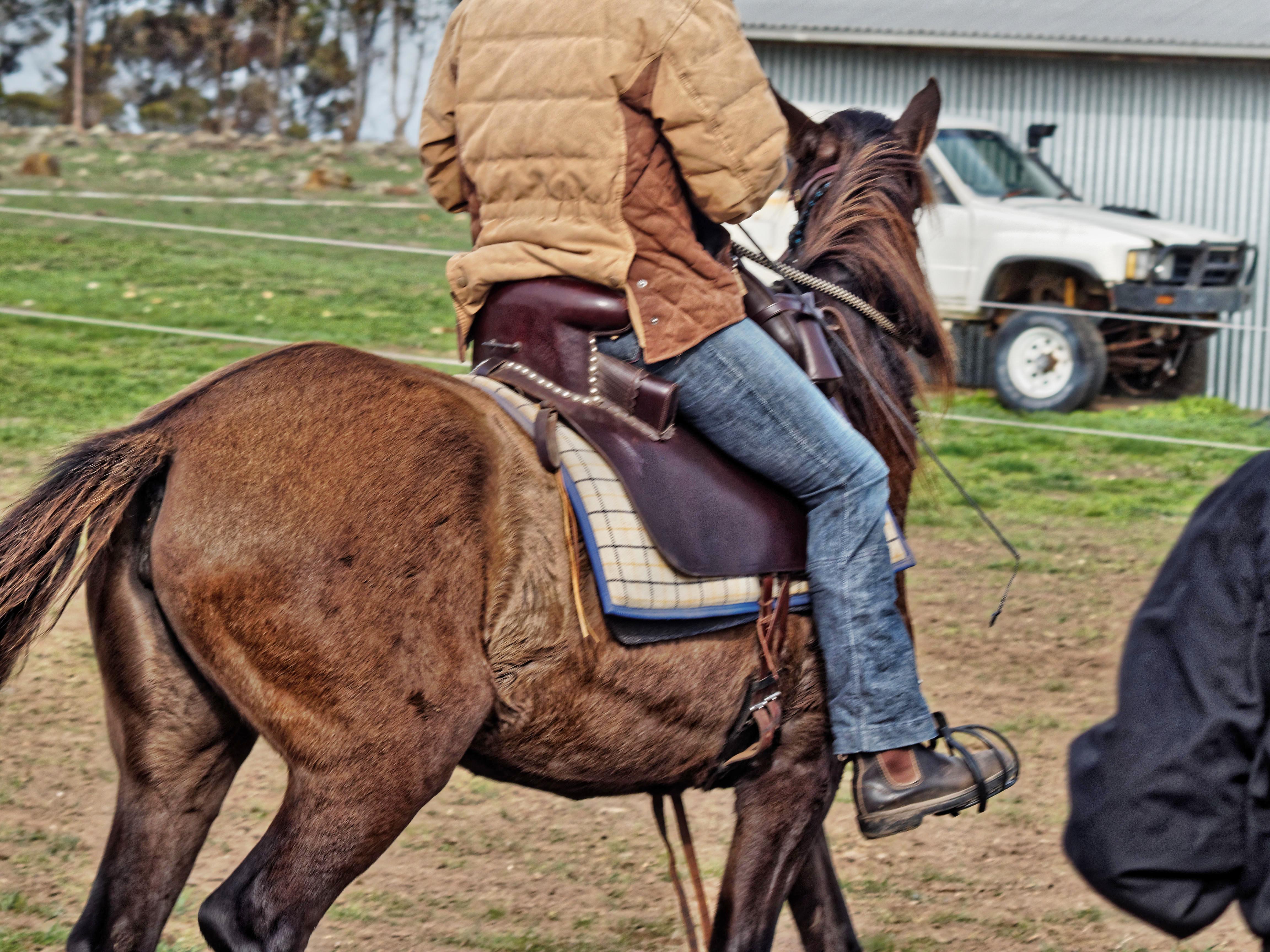 Extreme-cowboy-18.jpeg