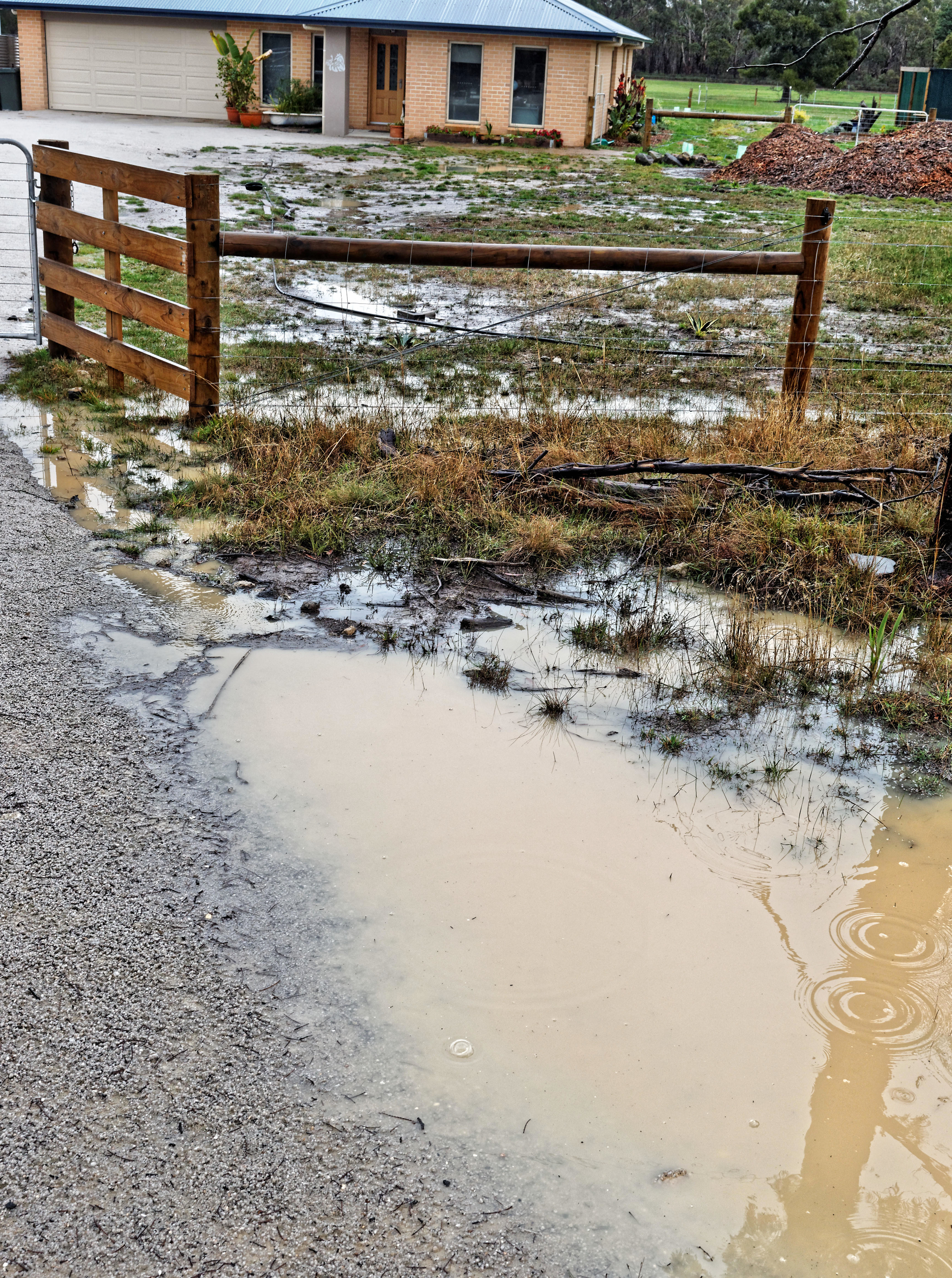 Wetness-6.jpeg