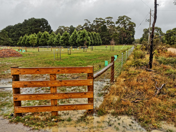 Wetness-12.jpeg