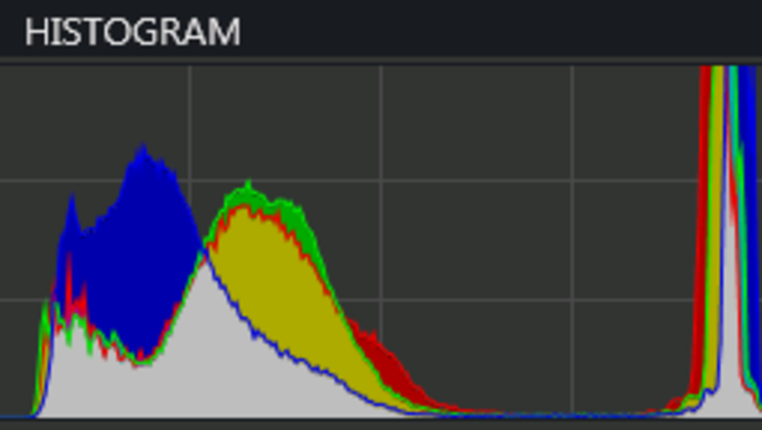 Histogram-raw.png