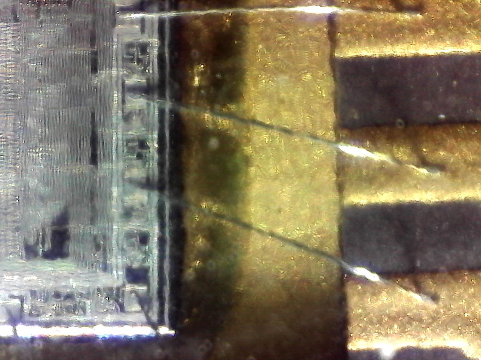 Microscope-test-1.jpeg