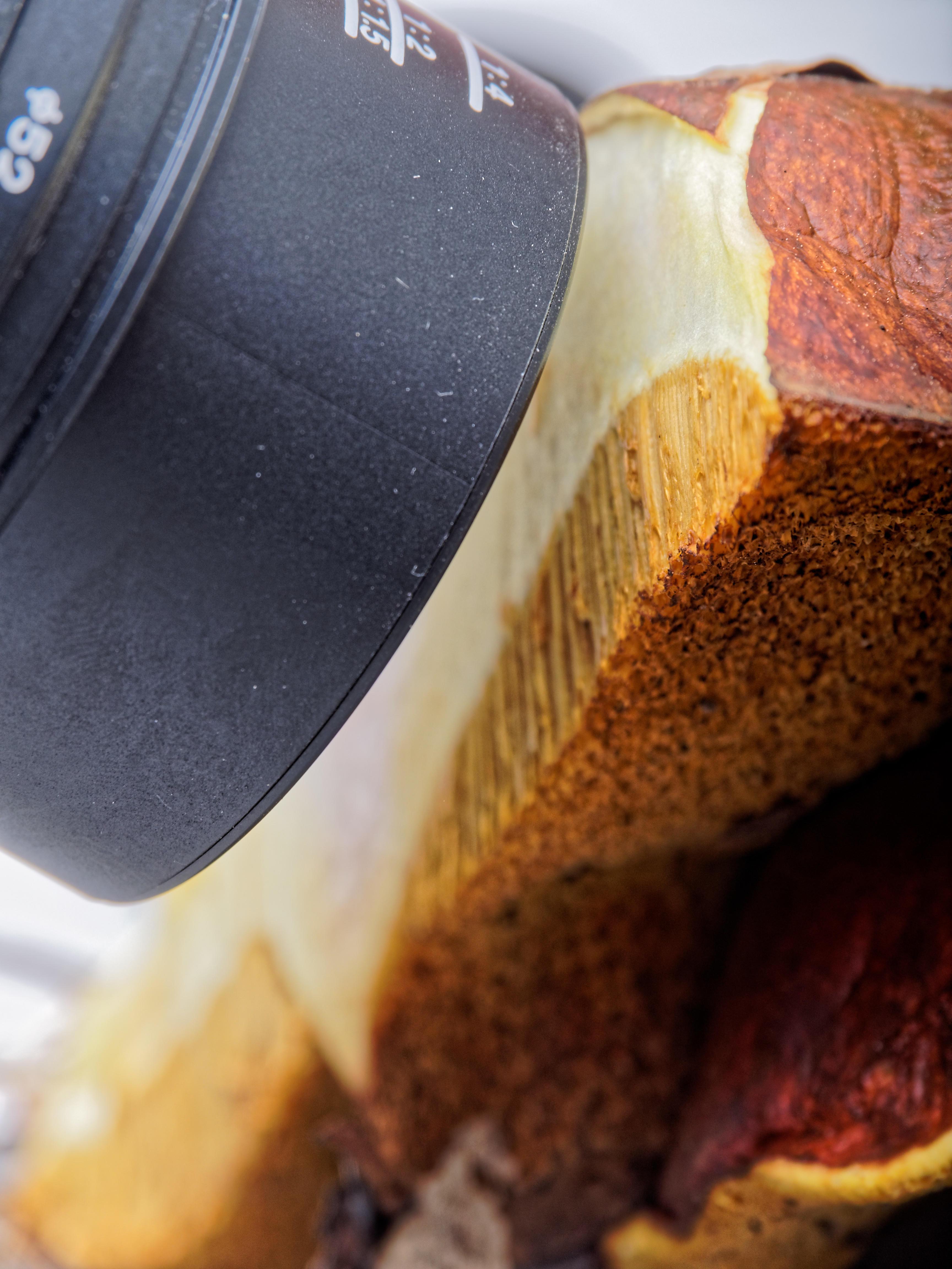 Mushroom-photos-3.jpeg