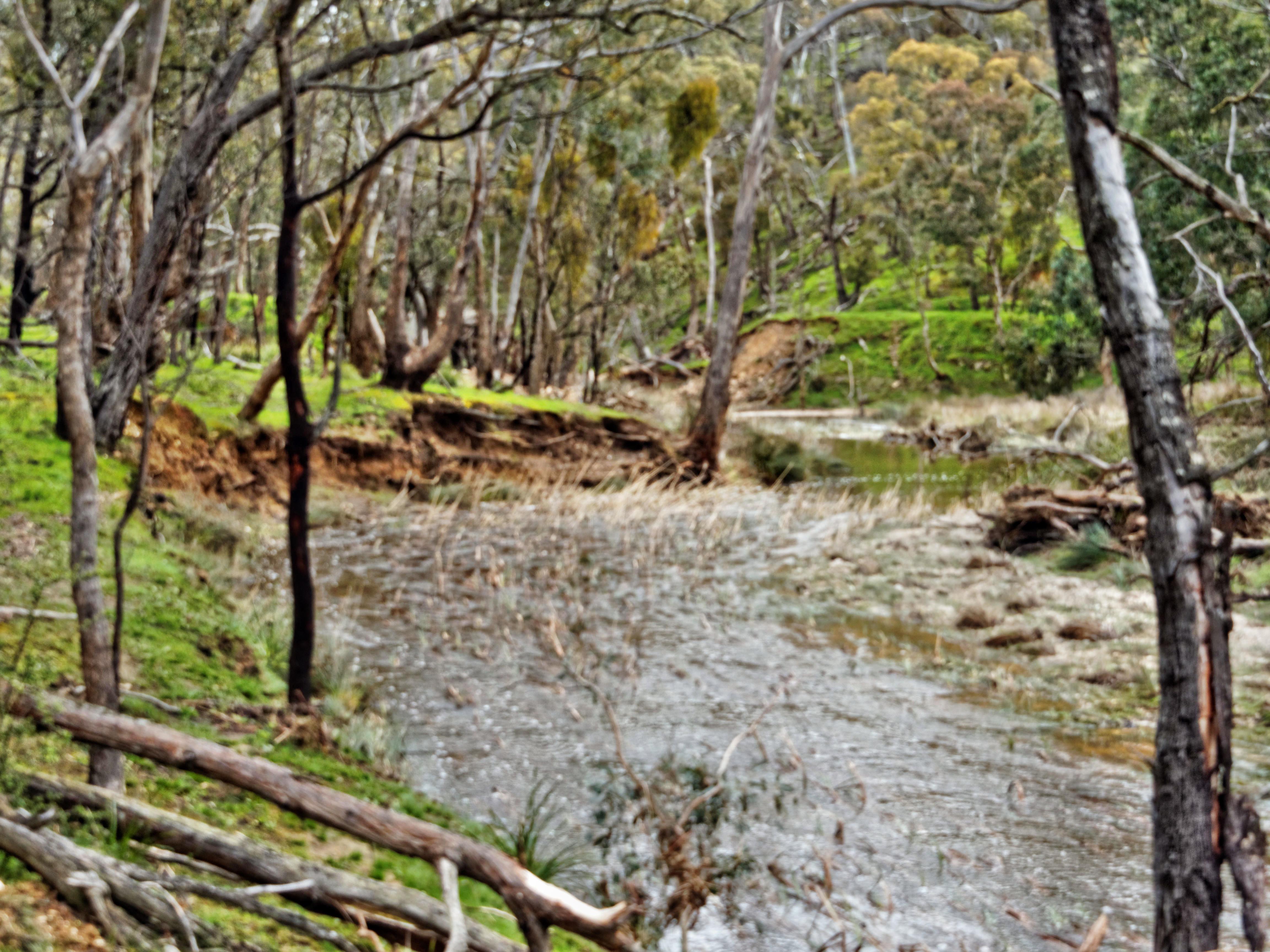 Misery-Creek-1.jpeg