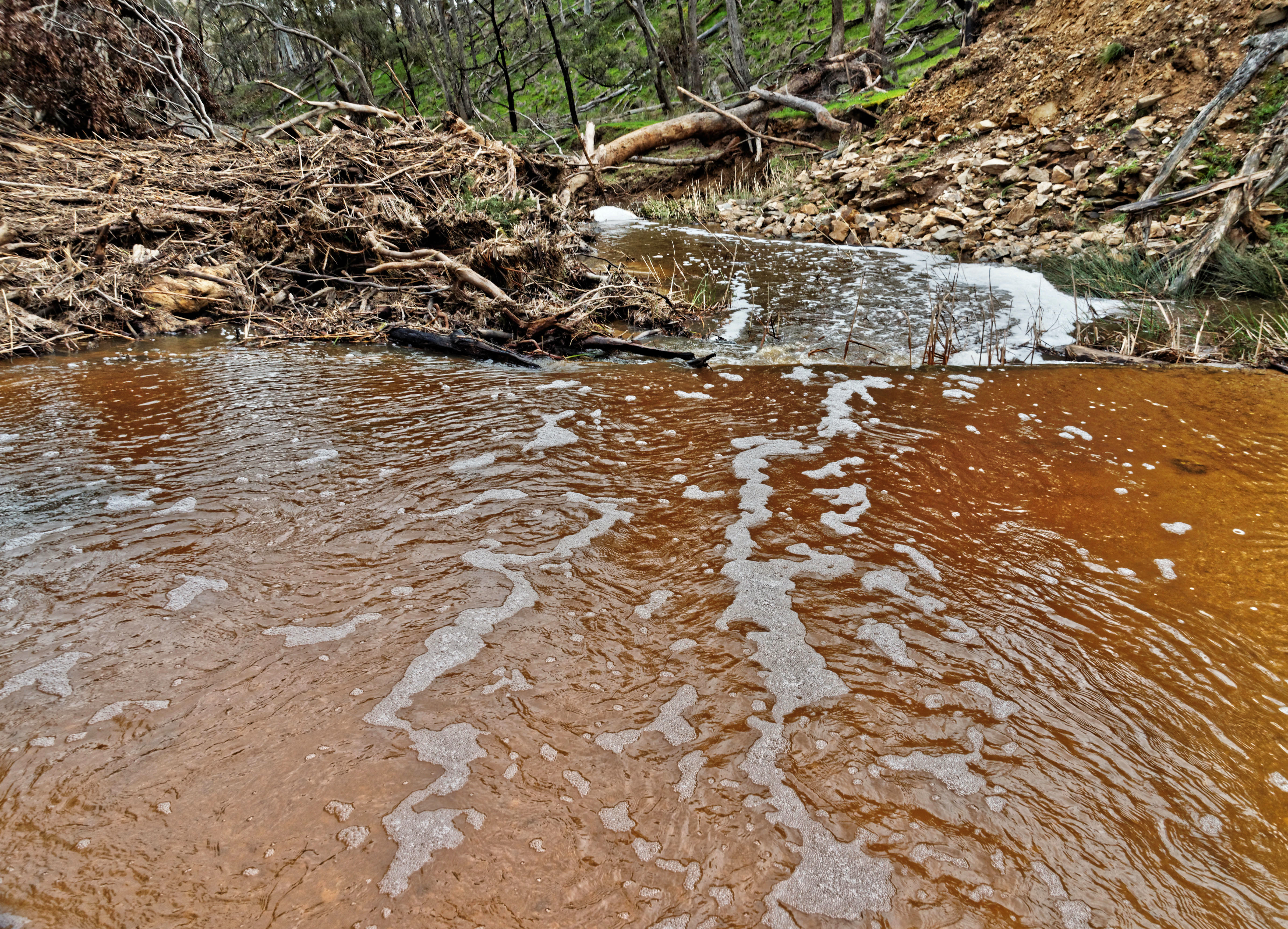Misery-Creek-14.jpeg