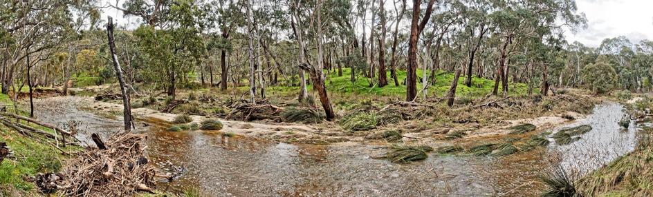 Misery-Creek-pano-1.jpeg