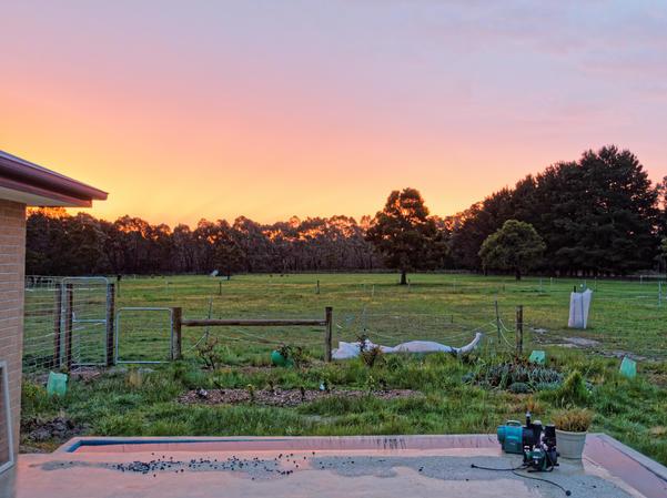 Sunset-3.jpeg