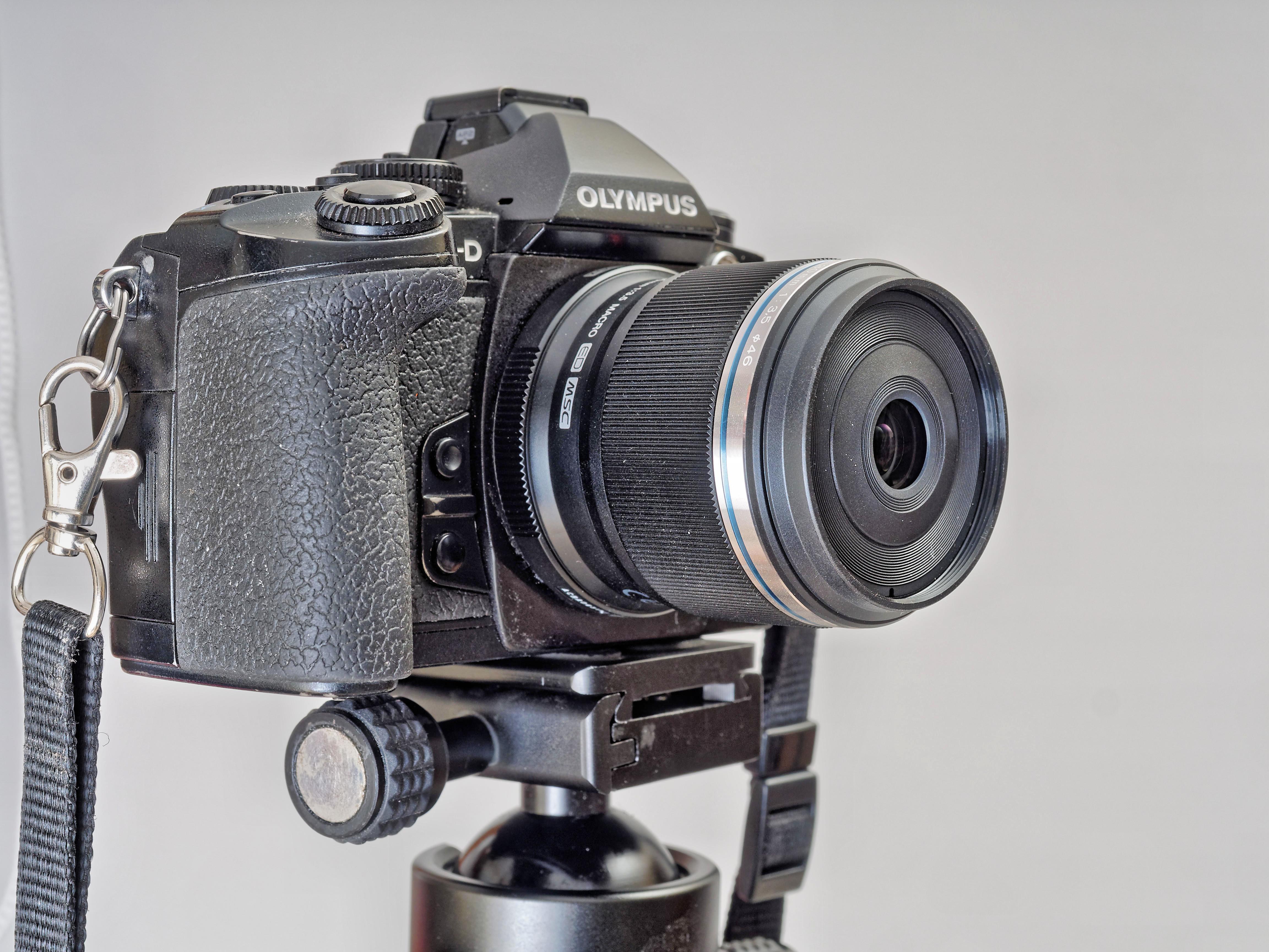 E-M1-Z30-2.jpeg